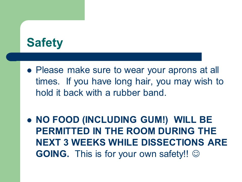 Safety Please make sure to wear your aprons at all times. If you have long hair, you may wish to hold it back with a rubber band. NO FOOD (INCLUDING G