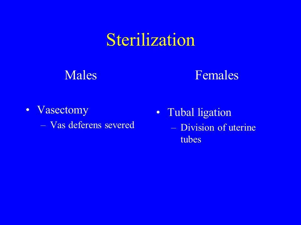 Sterilization Males Vasectomy –Vas deferens severed Females Tubal ligation –Division of uterine tubes