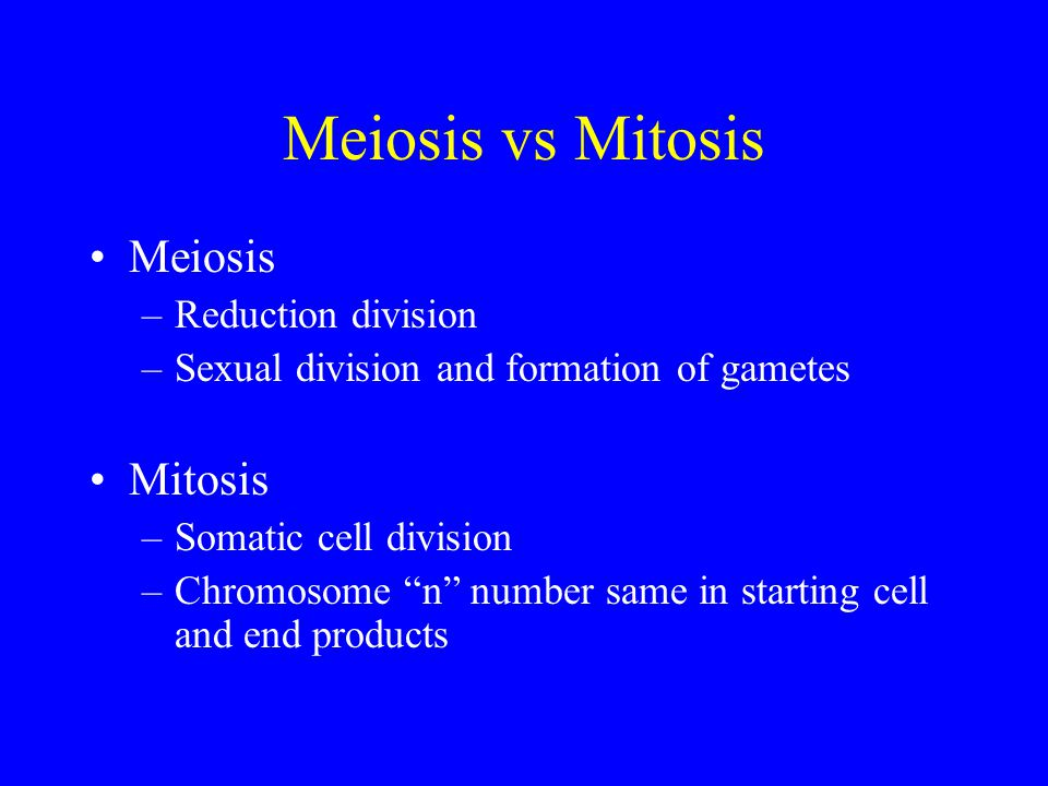 Meiosis vs Mitosis Meiosis –Reduction division –Sexual division and formation of gametes Mitosis –Somatic cell division –Chromosome n number same in starting cell and end products