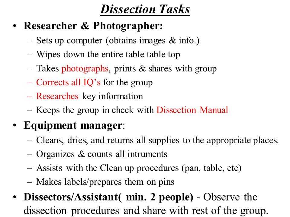 Initial Procedures to Begin the Dissection Dissection Guide: turn to the appropriate Pgs.