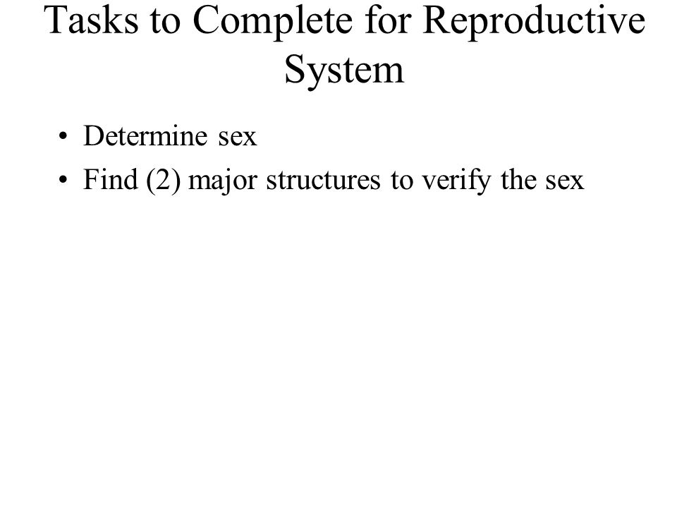 Tasks to Complete for Reproductive System Determine sex Find (2) major structures to verify the sex