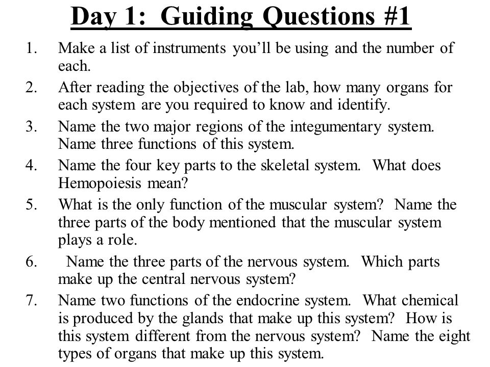 Guiding Questions #2 1.What purpose does the circulatory system serve.