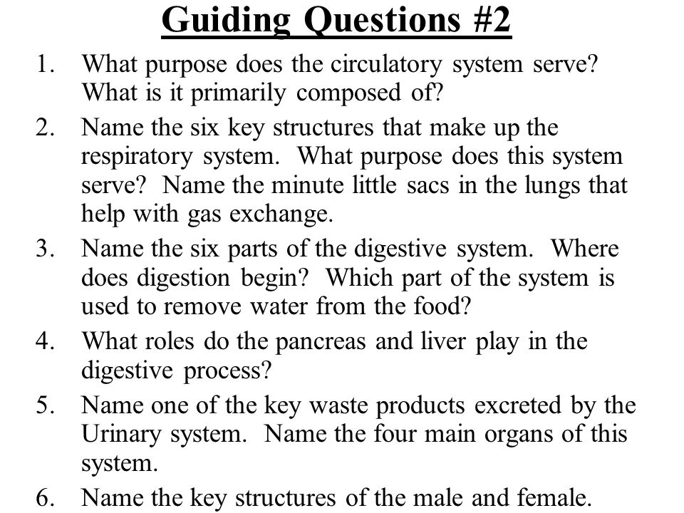 Guiding Questions #3 1.From your dissection guide which chapter discusses the muscular system.