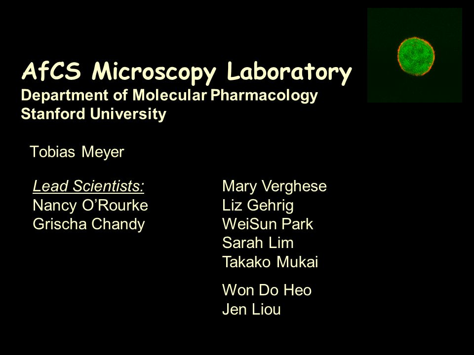 AfCS Microscopy Laboratory Department of Molecular Pharmacology Stanford University Tobias Meyer Lead Scientists: Nancy O'Rourke Grischa Chandy Mary Verghese Liz Gehrig WeiSun Park Sarah Lim Takako Mukai Won Do Heo Jen Liou