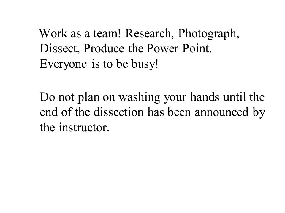 Work as a team! Research, Photograph, Dissect, Produce the Power Point. Everyone is to be busy! Do not plan on washing your hands until the end of the