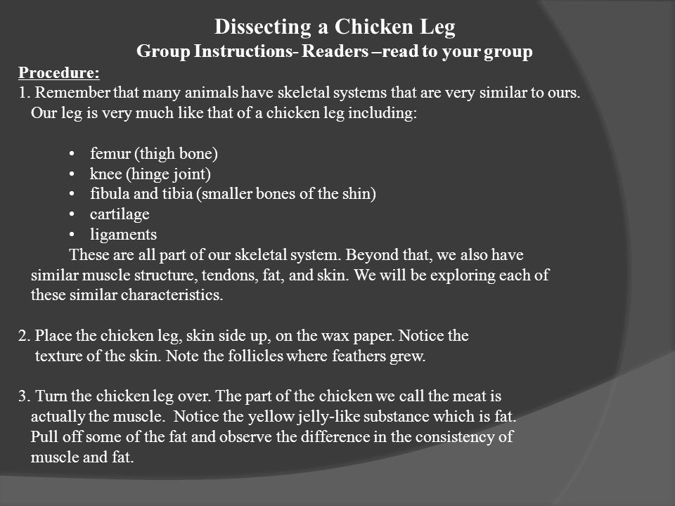 Dissecting a Chicken Leg Group Instructions- Readers –read to your group Procedure: 1.