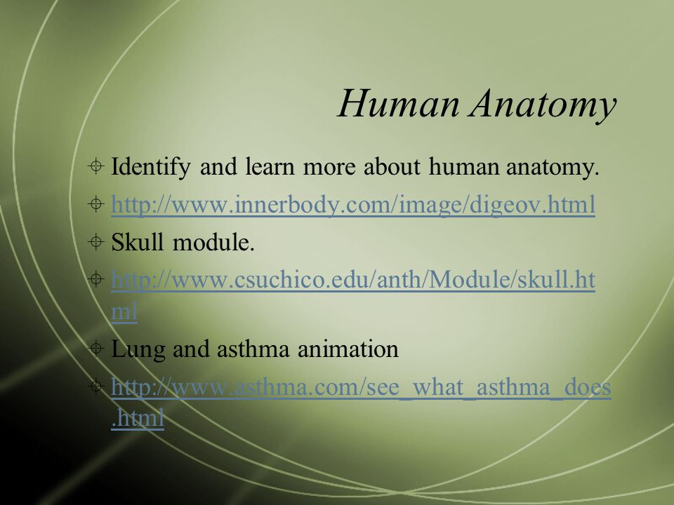 Human Anatomy  Identify and learn more about human anatomy.