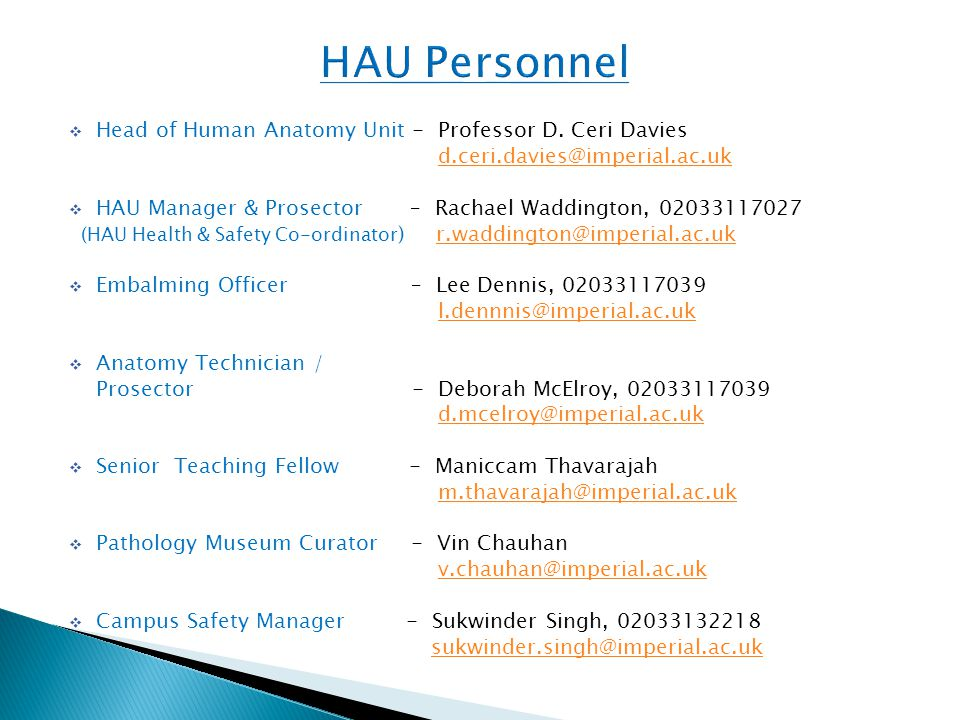  Head of Human Anatomy Unit - Professor D.