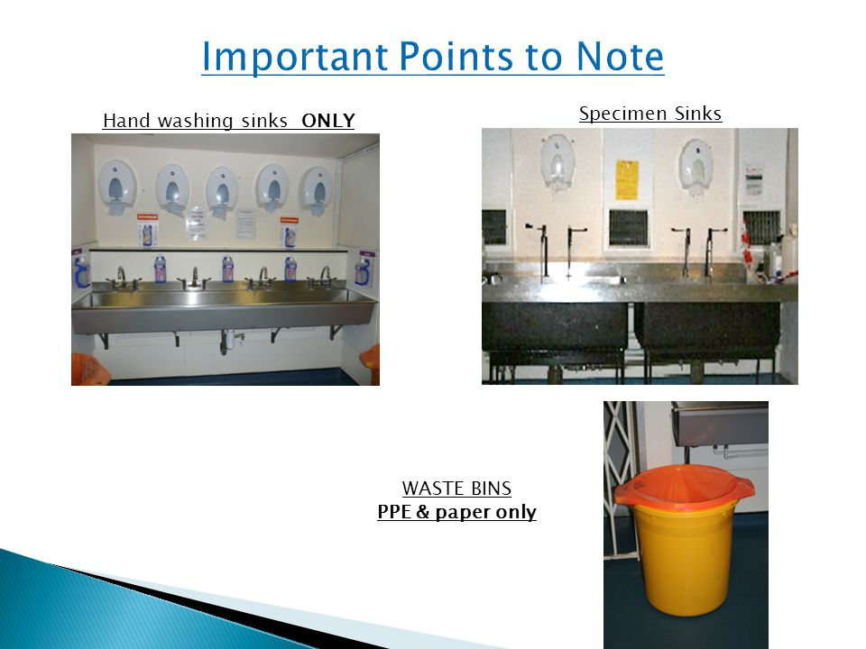 Hand washing sinks ONLY Specimen Sinks WASTE BINS PPE & paper only