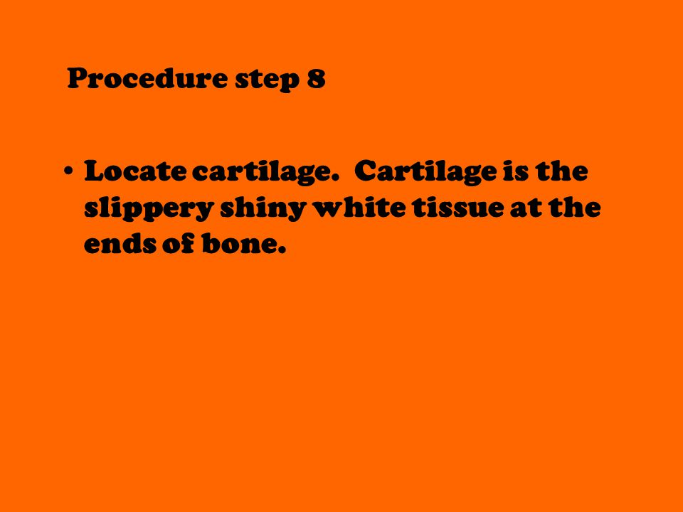 Procedure step 8 Locate cartilage. Cartilage is the slippery shiny white tissue at the ends of bone.