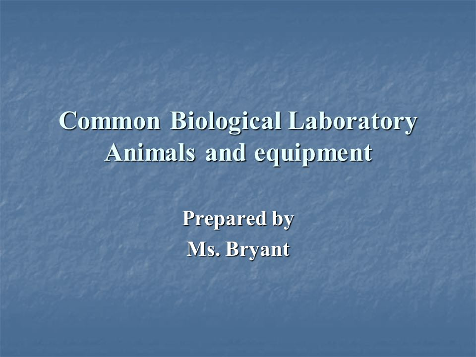 Common Biological Laboratory Animals and equipment Prepared by Ms. Bryant