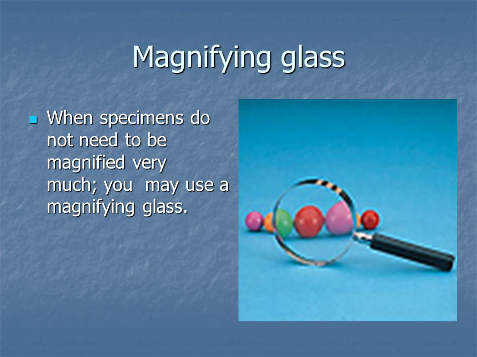Magnifying glass When specimens do not need to be magnified very much; you may use a magnifying glass. When specimens do not need to be magnified very