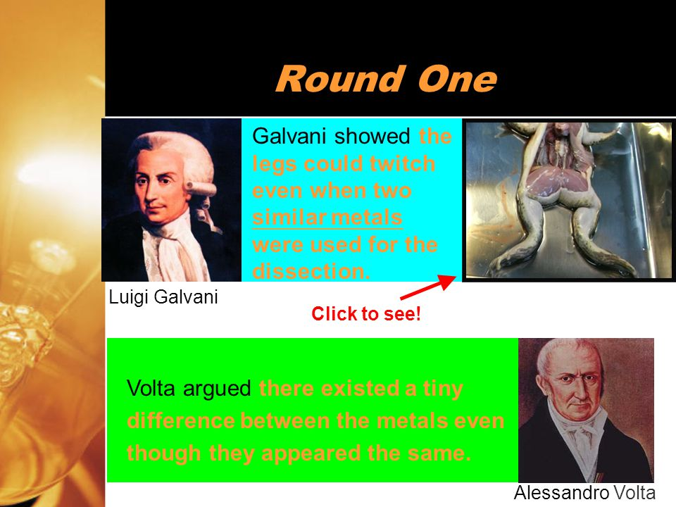 21 Round Two Galvani successfully demonstrated that the frog's legs could twitch in the absence of any metals.