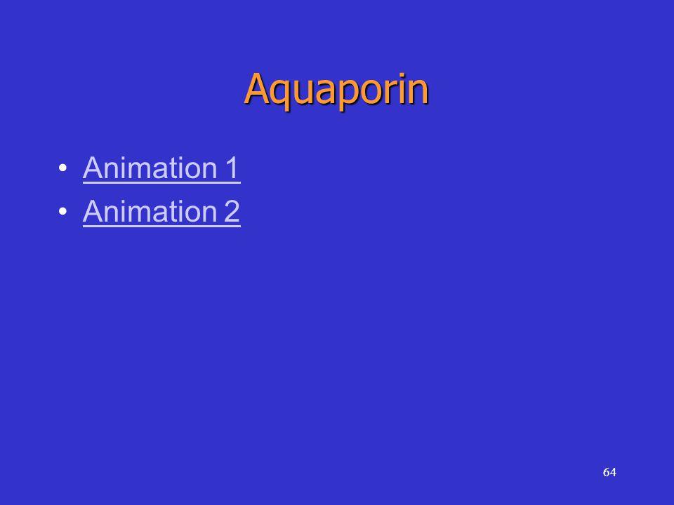 64 Aquaporin Animation 1 Animation 2