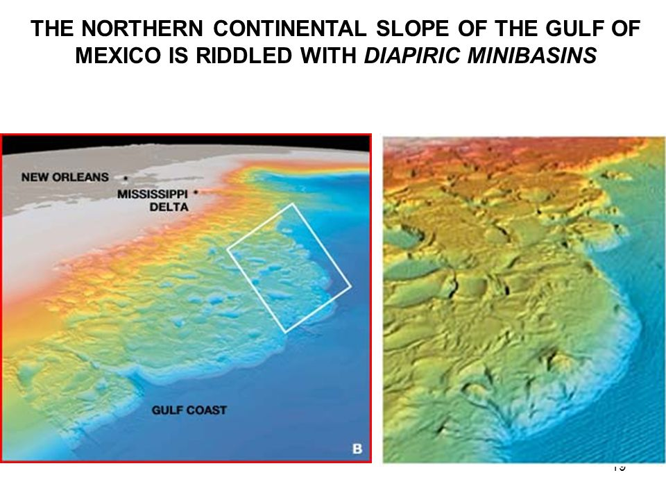 19 THE NORTHERN CONTINENTAL SLOPE OF THE GULF OF MEXICO IS RIDDLED WITH DIAPIRIC MINIBASINS
