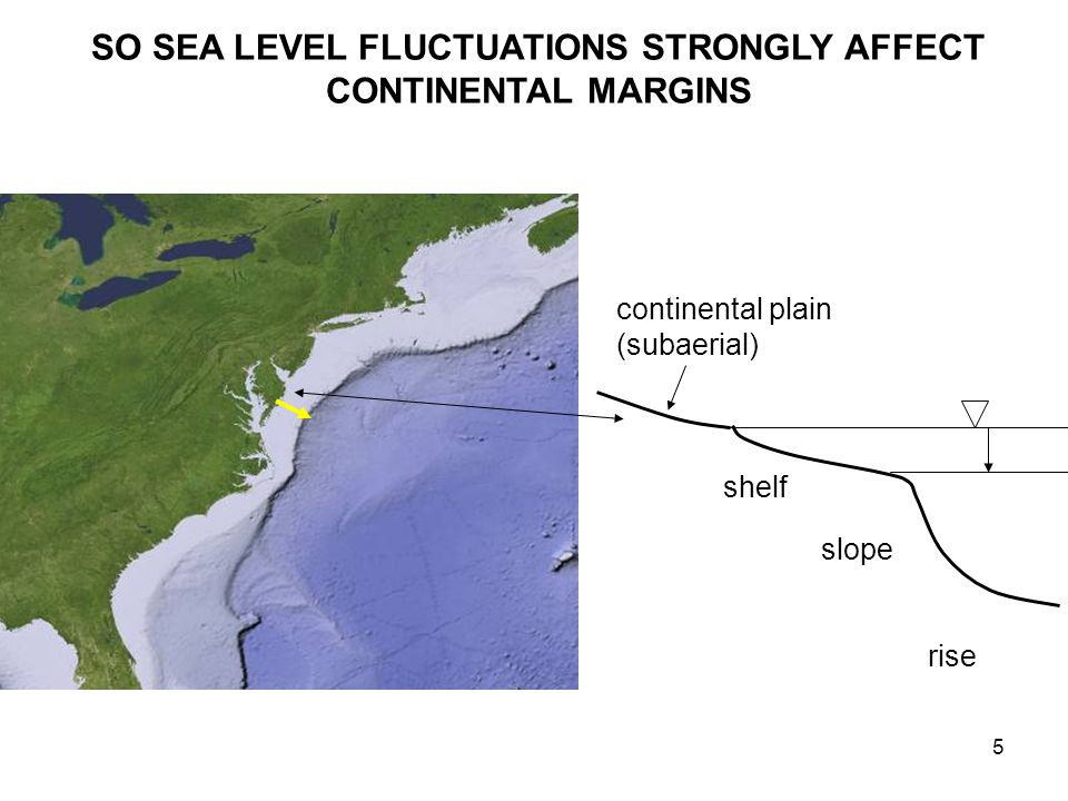 5 shelf slope rise continental plain (subaerial) SO SEA LEVEL FLUCTUATIONS STRONGLY AFFECT CONTINENTAL MARGINS