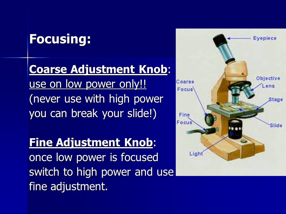 Focusing: Coarse Adjustment Knob: use on low power only!.
