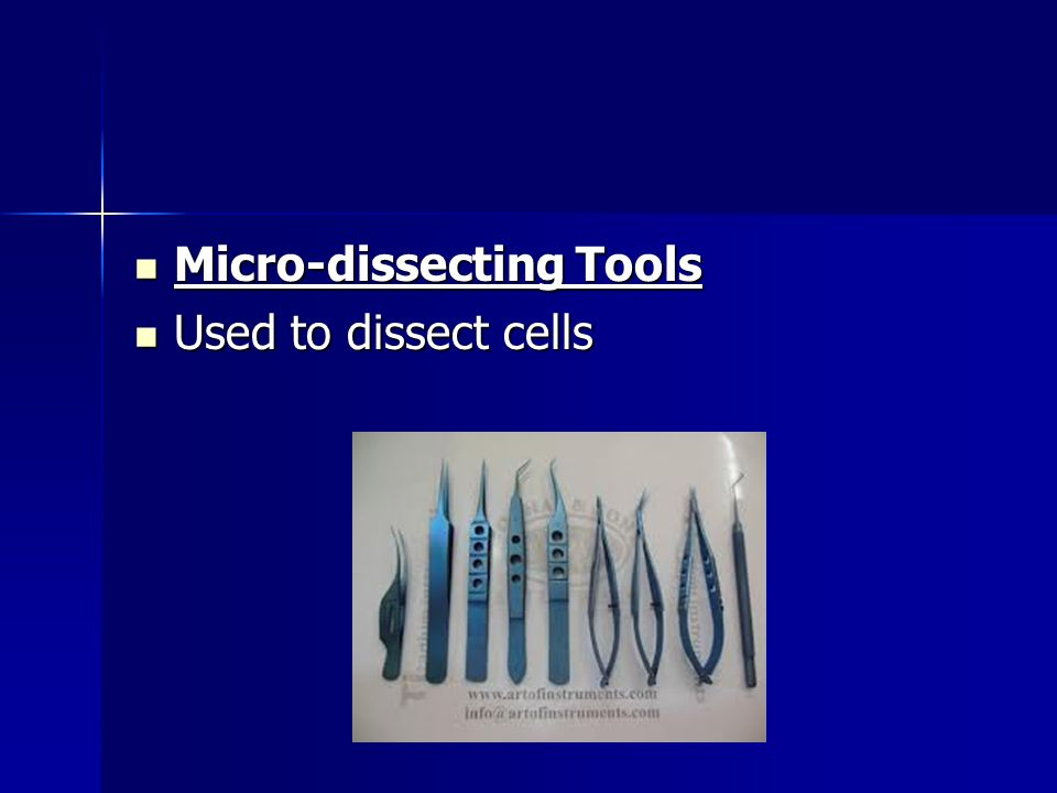 Micro-dissecting Tools Micro-dissecting Tools Used to dissect cells Used to dissect cells