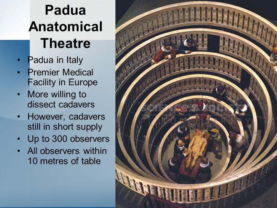 Padua Anatomical Theatre Padua in Italy Premier Medical Facility in Europe More willing to dissect cadavers However, cadavers still in short supply Up to 300 observers All observers within 10 metres of table
