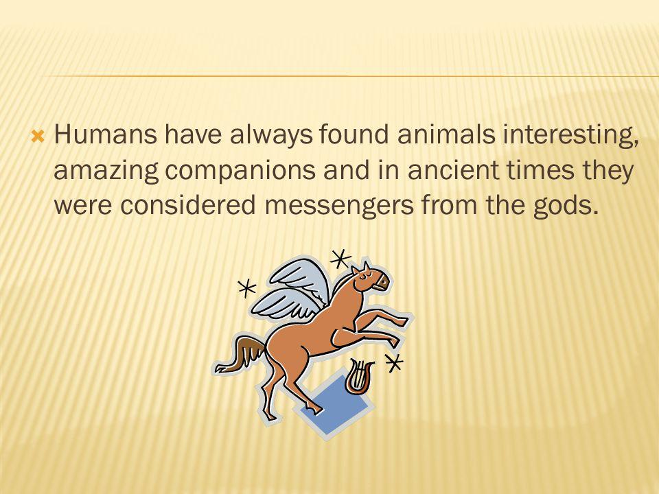  Information taken from  www.nal.usda.gov/awic/pubs/VetHistory/vethistory.