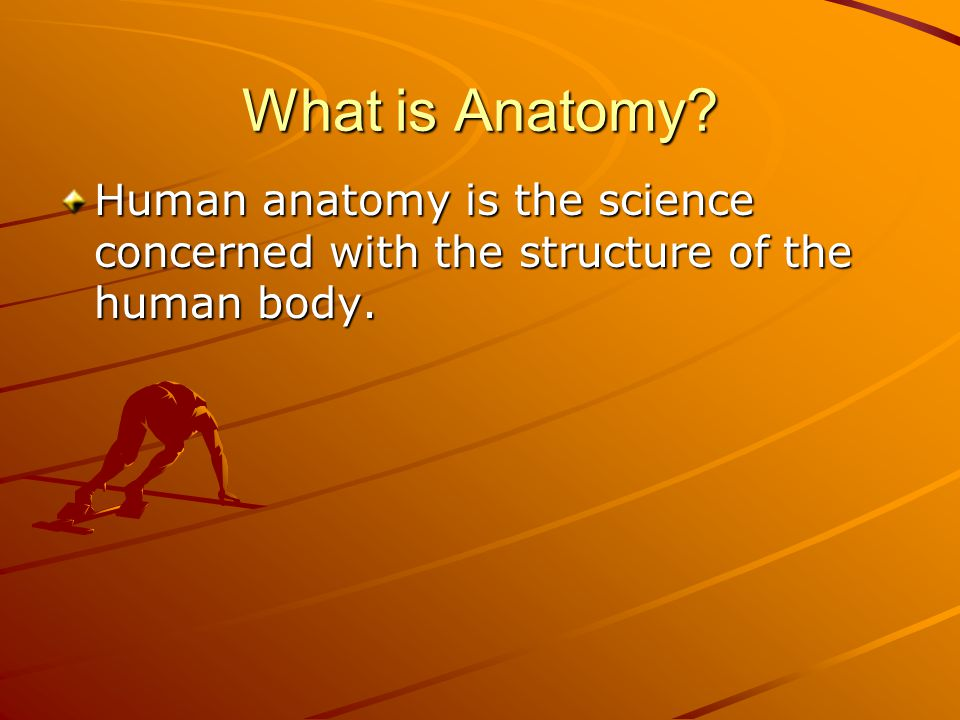 What is Anatomy? Human anatomy is the science concerned with the structure of the human body.