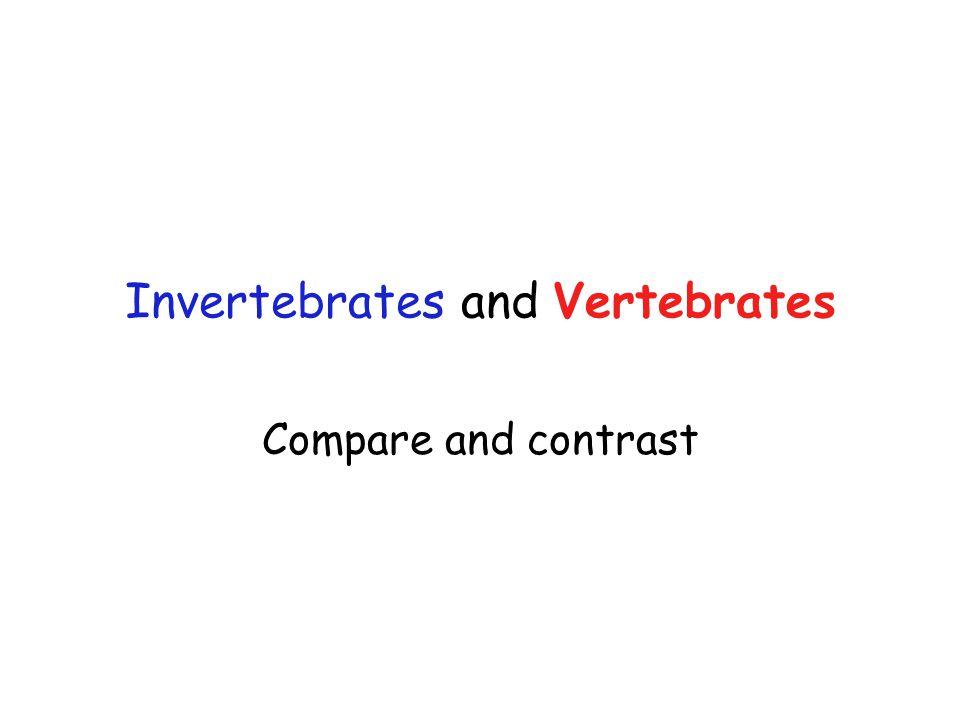 Invertebrates and Vertebrates Compare and contrast