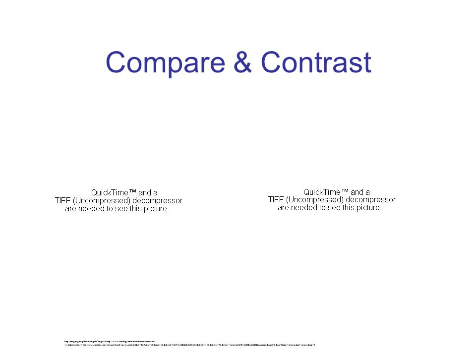 Compare & Contrast http://images.google.com/imgres?imgurl=http://www.biologycorner.com/resources/rat- 1.gif&imgrefurl=http://www.biologycorner.com/bio3/rat_guide.html&h=267&w=180&sz=16&tbnid=hUYnmDZcTAXbhM:&tbnh=113&tbnw=76&prev=/images%3Fq%3Drat%2Bdissection&start=3&sa=X&oi=images&ct=image&cd=3