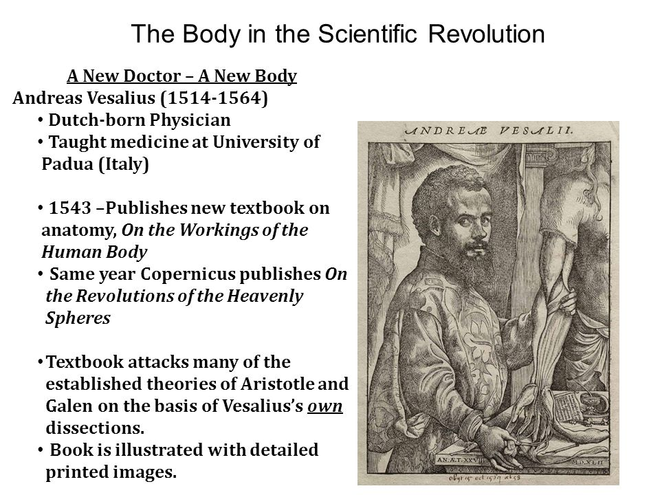 The Body in the Scientific Revolution A New Doctor – A New Body Andreas Vesalius (1514-1564) Dutch-born Physician Taught medicine at University of Pad