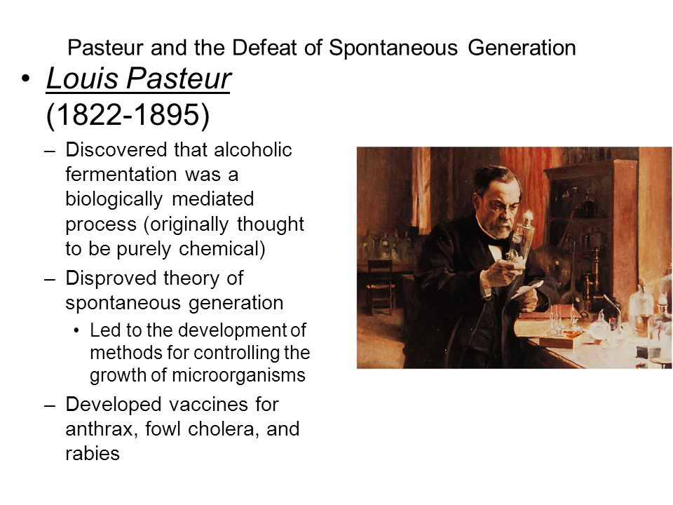 Pasteur and the Defeat of Spontaneous Generation Louis Pasteur (1822-1895) –Discovered that alcoholic fermentation was a biologically mediated process