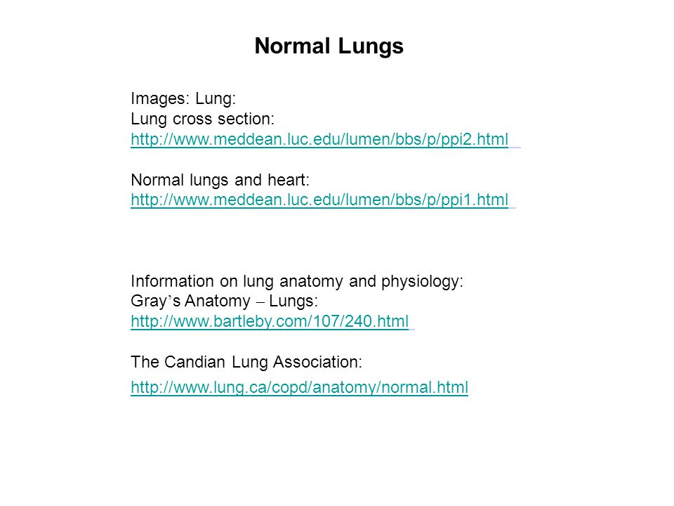Normal Lungs Images: Lung: Lung cross section: http://www.meddean.luc.edu/lumen/bbs/p/ppi2.html Normal lungs and heart: http://www.meddean.luc.edu/lumen/bbs/p/ppi1.html Information on lung anatomy and physiology: Gray ' s Anatomy – Lungs: http://www.bartleby.com/107/240.html The Candian Lung Association: http://www.lung.ca/copd/anatomy/normal.html