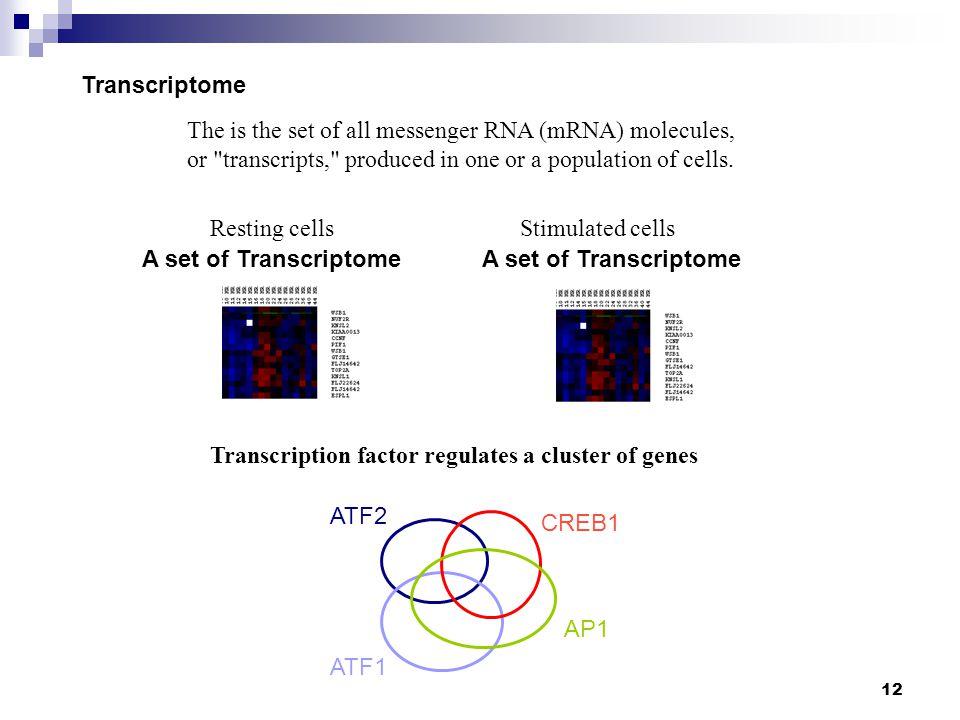 13 Transcriptional regulation- Promoter and transcription factors ER+ER- TF-regulated genes How to identify a transcription factor-mediated gene upon ER stimulation.