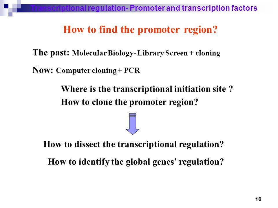 17 Transcriptional regulation- Promoter and transcription factors How to find the promoter region.