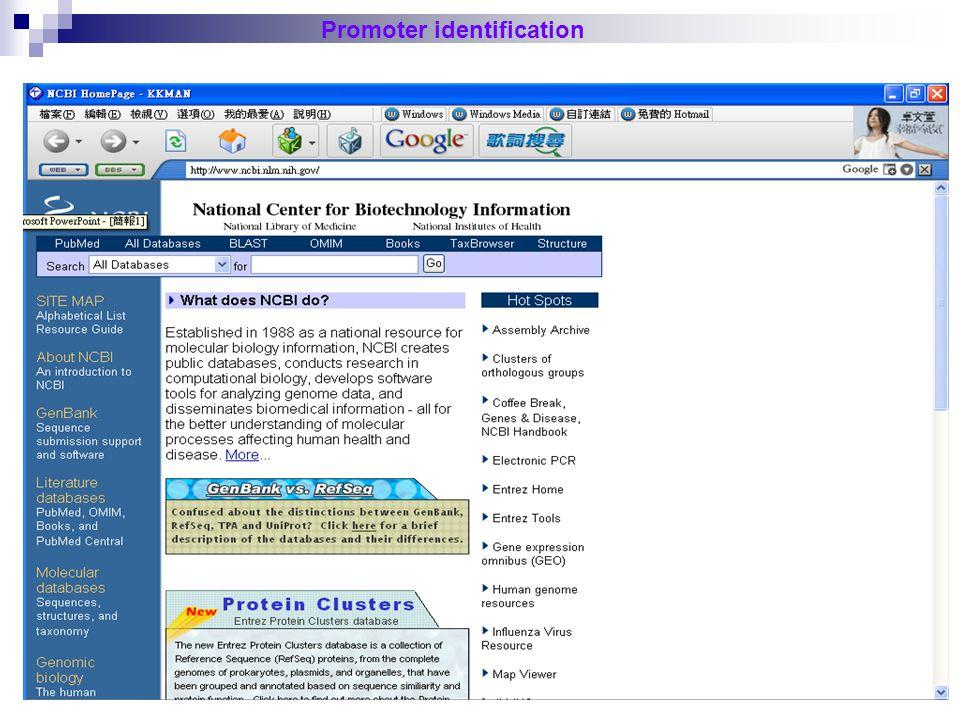 21 Promoter identification