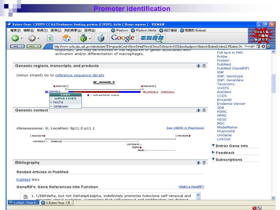 24 Promoter identification