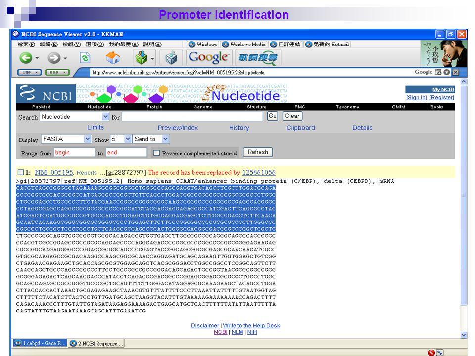 25 Promoter identification