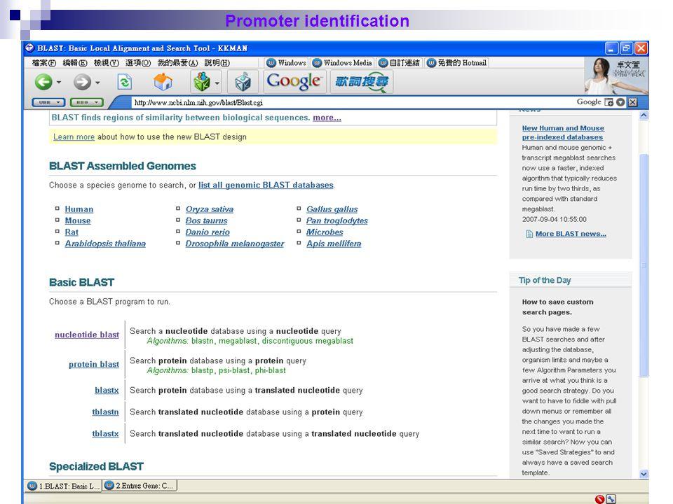 26 Promoter identification