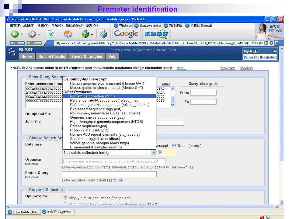27 Promoter identification