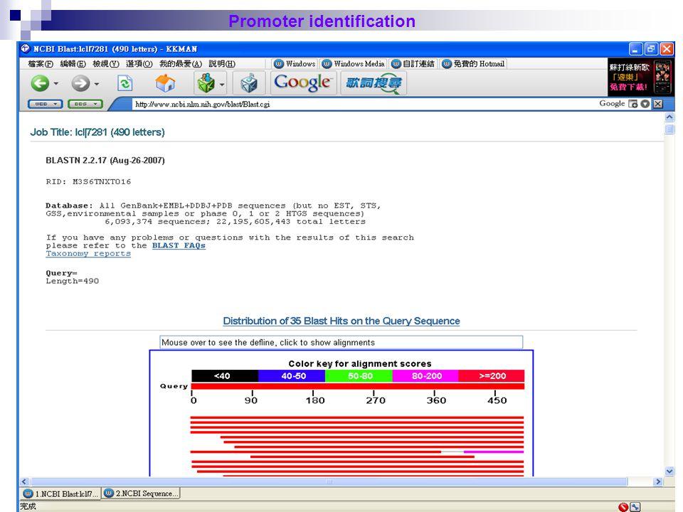 29 126490 126001 Promoter identification Direction of Transcription
