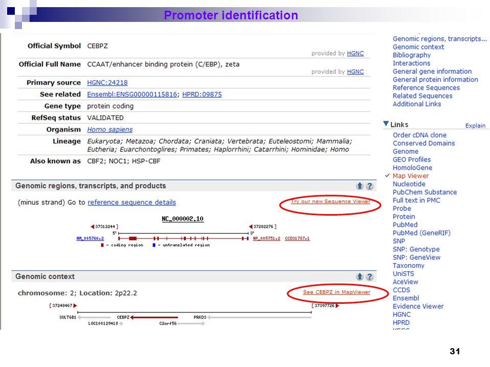 32 Promoter identification EST