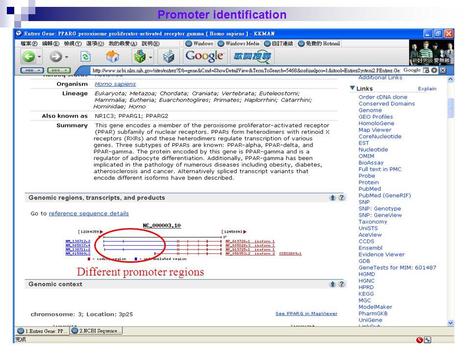 38 http://www.bioinformatics.org/sms/rev_comp.html Promoter identification