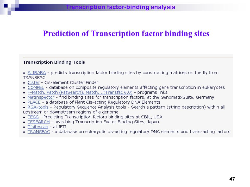 48 Transcription factor-binding analysis