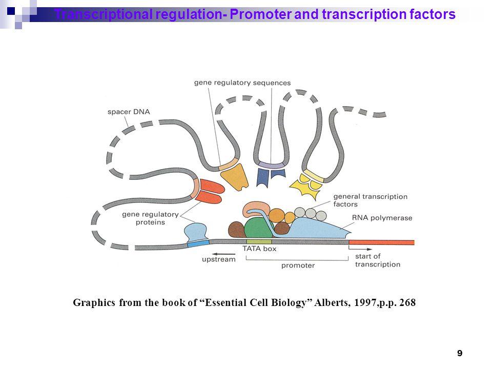 10 Transcriptional regulation- Promoter and transcription factors How to dissect the transcriptional regulation.