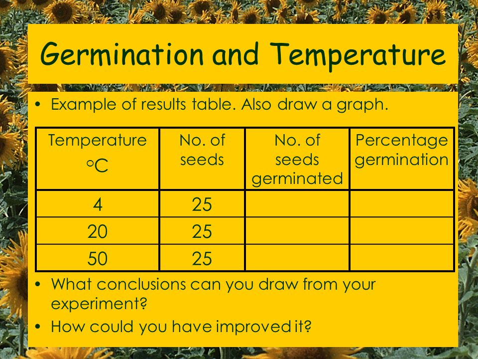 What affects germination? 3Bio2 Brainstorm 16/03/07 Spacing / number of seeds Humidity / water volume Type of seeds Size of seeds Type of soil / mass