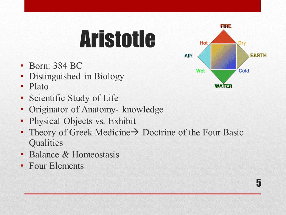 5 Aristotle Born: 384 BC Distinguished in Biology Plato Scientific Study of Life Originator of Anatomy- knowledge Physical Objects vs.