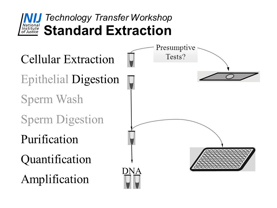 Technology Transfer Workshop Standard Extraction Cellular Extraction Epithelial Digestion Sperm Wash Sperm Digestion Purification Quantification Ampli