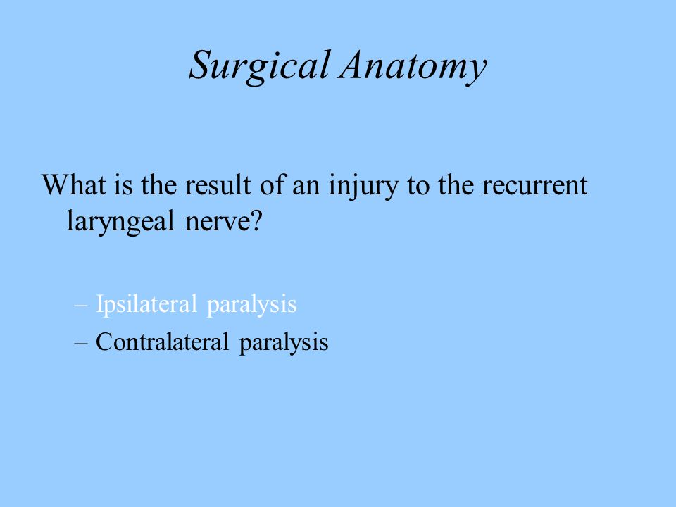 Surgical Anatomy What is the result of an injury to the recurrent laryngeal nerve? –Ipsilateral paralysis –Contralateral paralysis
