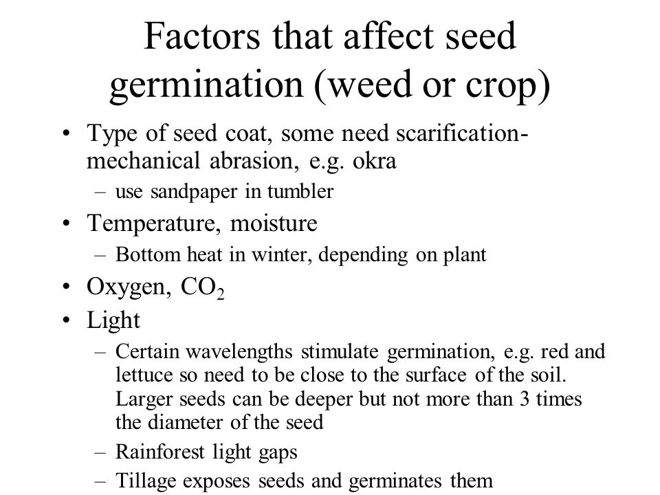 Factors that affect seed germination (weed or crop) Type of seed coat, some need scarification- mechanical abrasion, e.g.