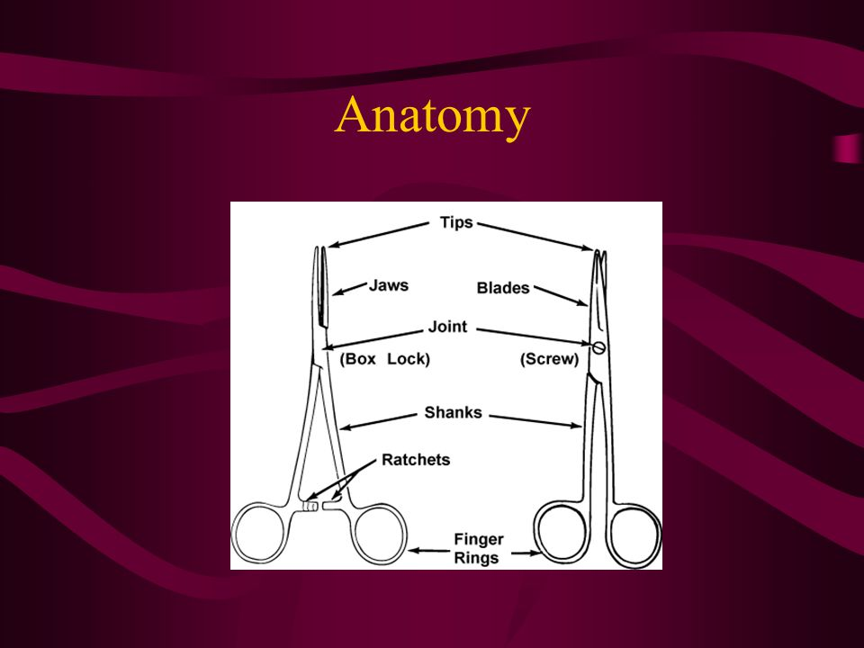Visualization Laparoscopic procedures require trocars, ports, cannulas for laparoscopic instrumentation access Is it a retractor or a speculum.