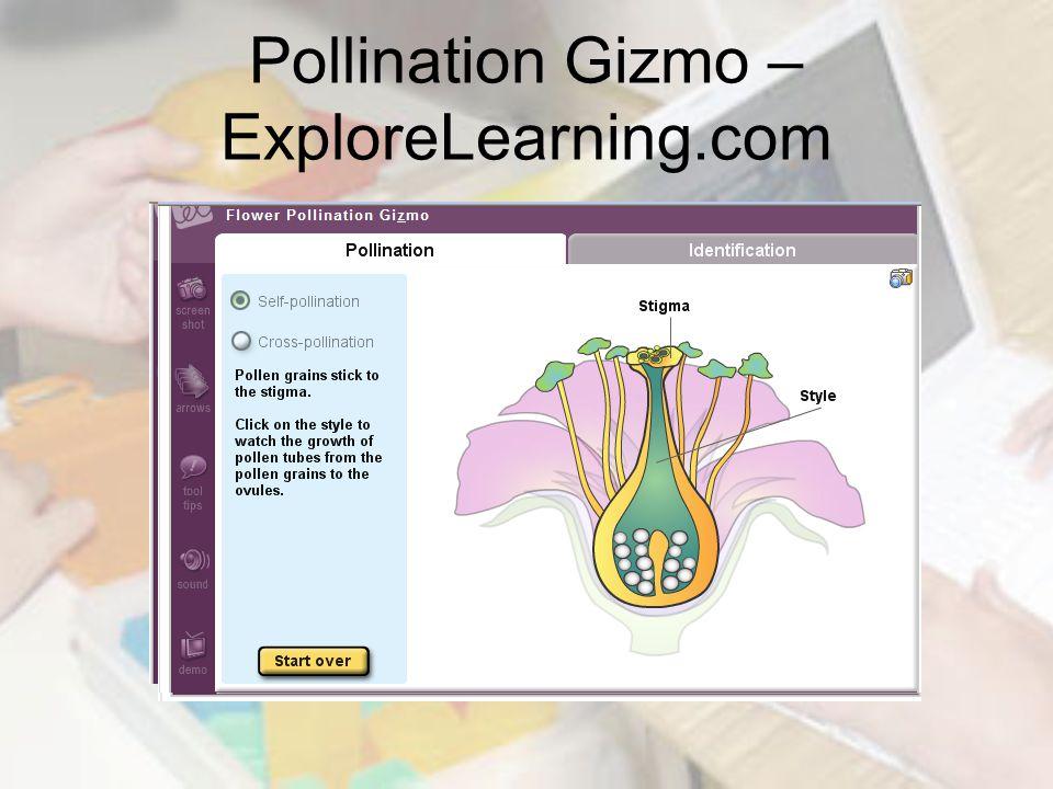 Pollination Gizmo – ExploreLearning.com