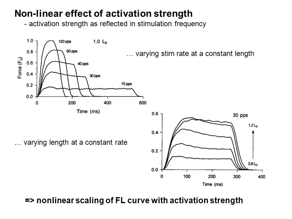 Non-linear effect of activation strength - activation strength as reflected in stimulation frequency … varying stim rate at a constant length … varyin